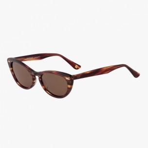 Óculos de sol Cristina  MOD CFS 008 BROWN